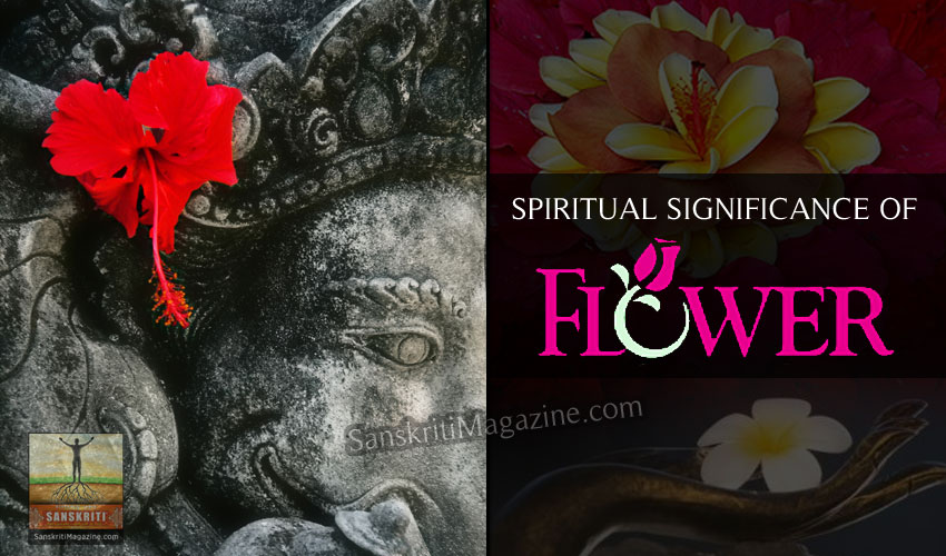 Spiritual Significance Of Flowers