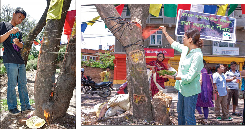 (left) incense is offered at the base of this young man's tree which is posted with a yellow printed plea to stop the cutting; (right) sindoor powder from a tapari leaf bowl is thrown upon this tree, whose companion has already been cut down