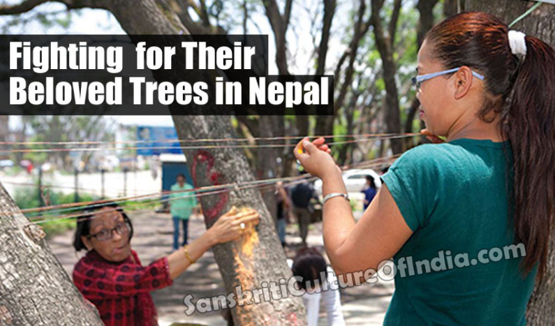 Fighting for Their Beloved Trees in Nepal