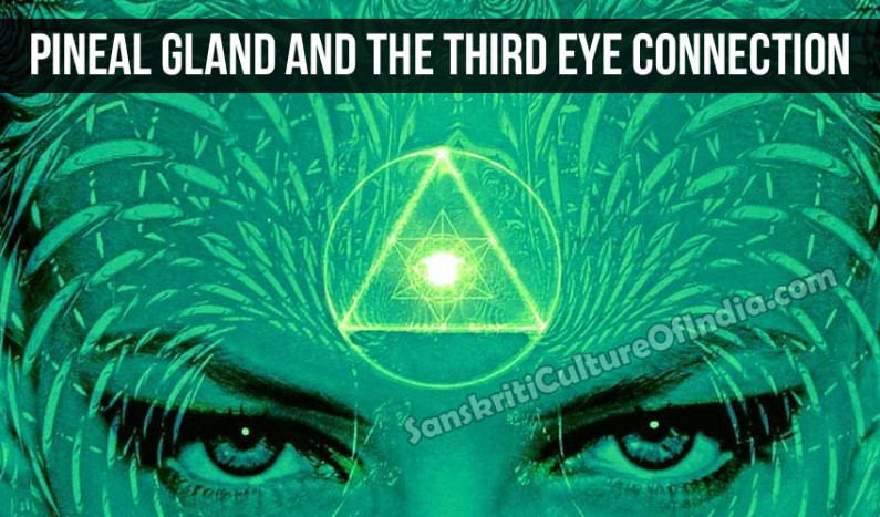 Pineal Gland and the Third Eye Connection