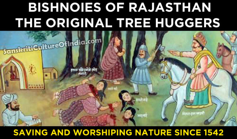 Bishnois of Rajasthan – The Original Tree Huggers