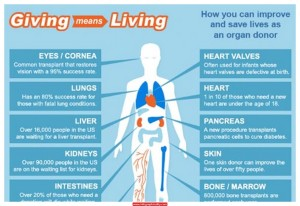 organ donation Infographic (1)