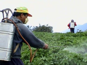 pesticide_spray