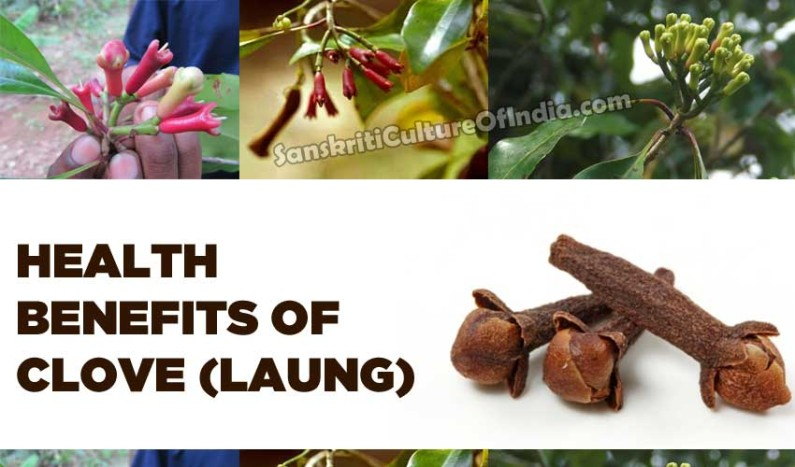 Health benefits of Clove (Laung)