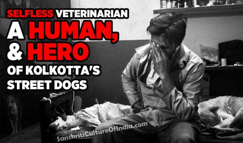Selfless Veterinarian of Kolkotta's Street Dogs