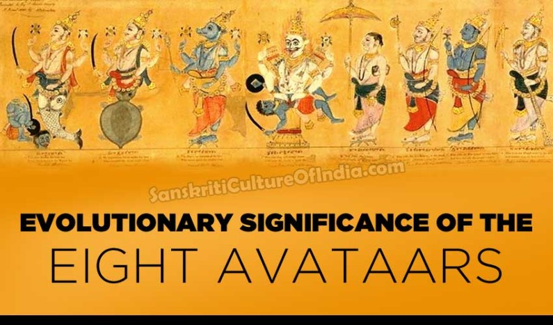 Evolutionary Significance of the Eight Avataars