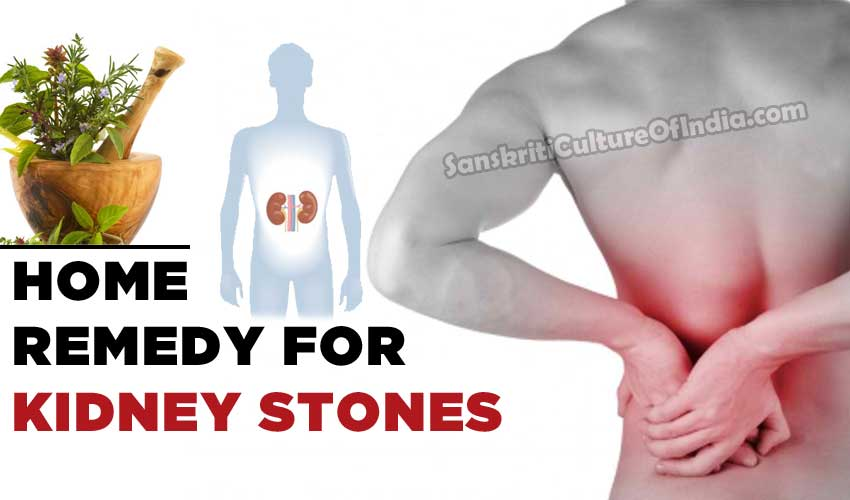 Ayurvedic Home Remedies For Kidney Stones Sanskriti Hinduism And Indian Culture Website