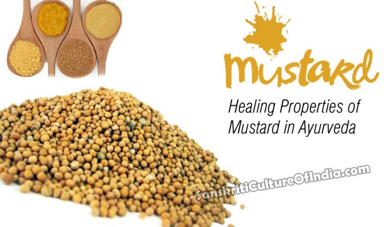 Healing Properties of Mustard in Ayurveda