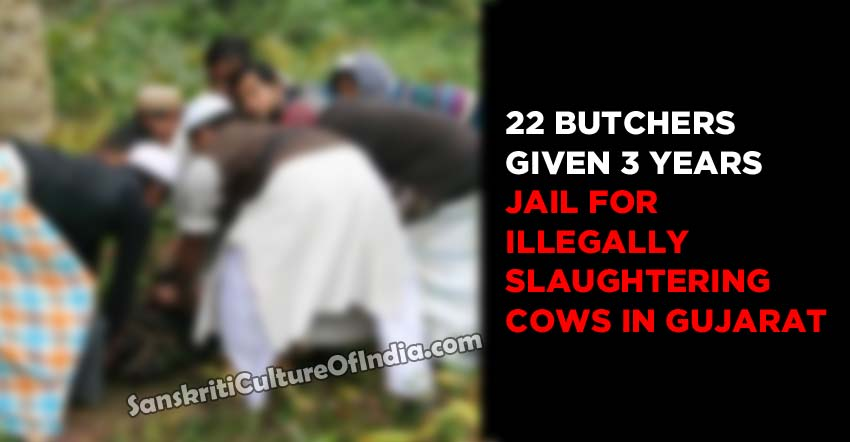 jail for illegally slaughtering cows in Gujarat