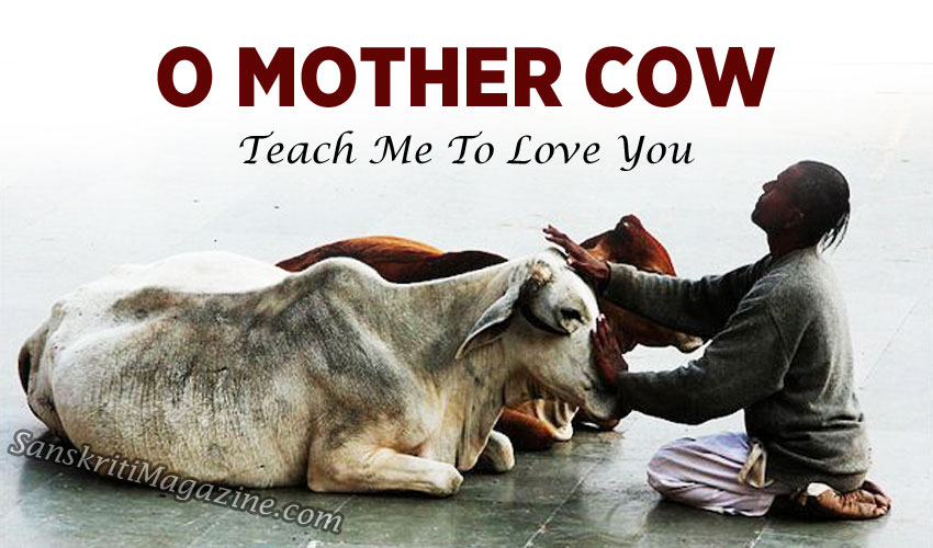 O Mother Cow, teach me to love you