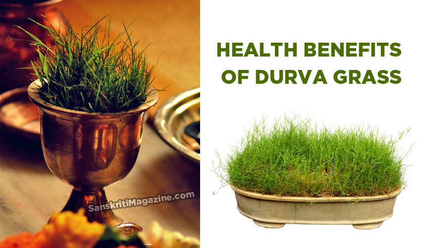 Health benefits of Durva grass