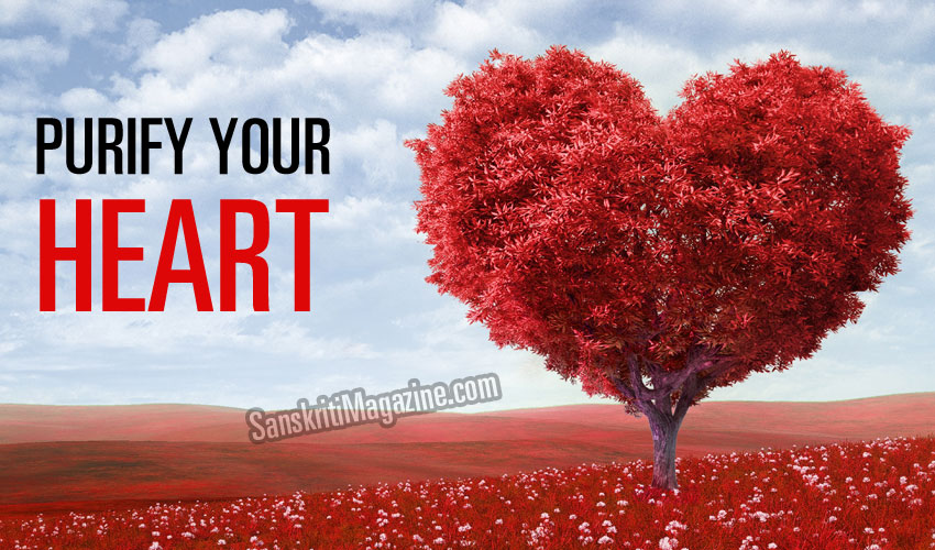 Purify Your Heart