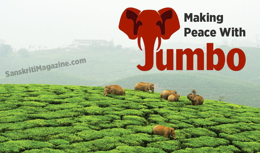 Making Peace With Jumbos