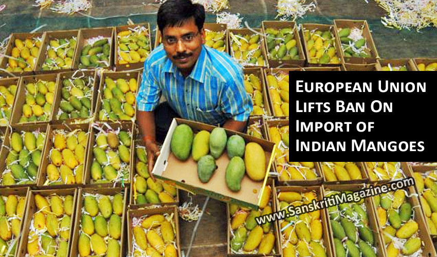 European Union Lifts Ban On Import of Indian Mangoes