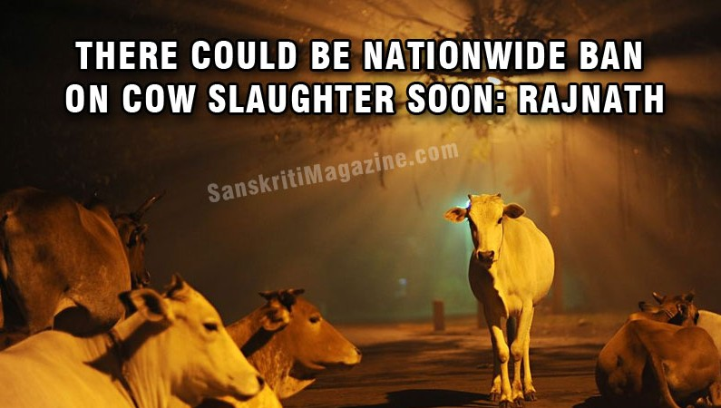Will try to bring nationwide ban on cow slaughter: Rajnath