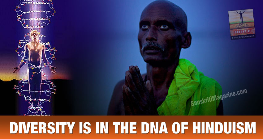 DIVERSITY IS IN THE DNA OF HINDUISM