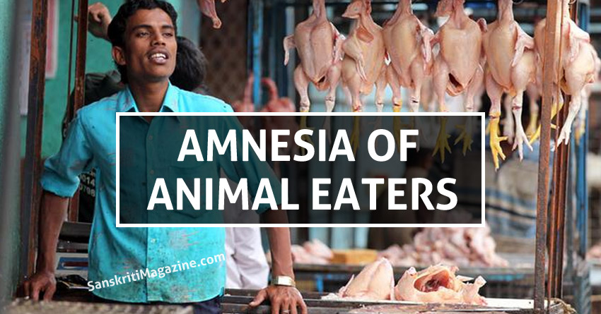 AMNESIA-OF-ANIMAL-EATERS