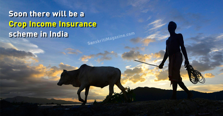 Soon-there-will-be-a-Crop-Income-Insurance-scheme-in-India