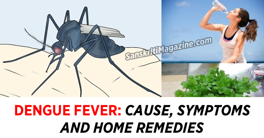 Dengue Fever: Cause, Symptoms and Home Remedies