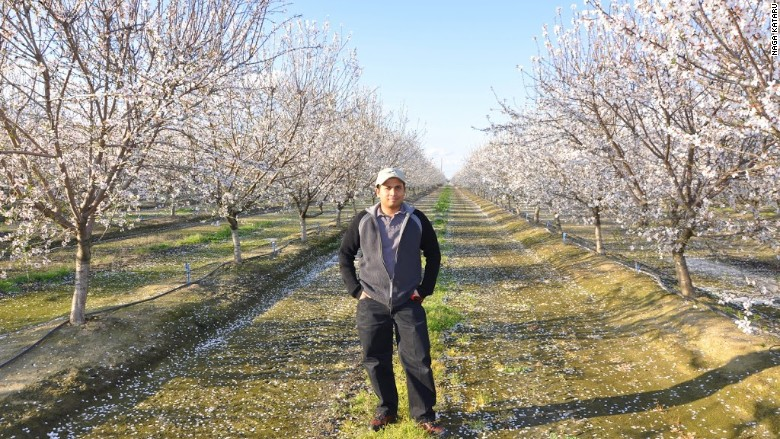 Naga Kataru on his farm in Modesto, California.