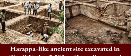 Harappa-like ancient site excavated in Tamil Nadu, 3,000 artifacts discovered