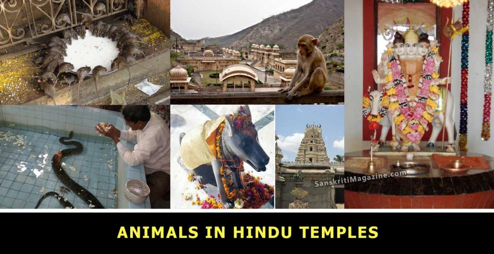 Animals-in-Hindu-Temples