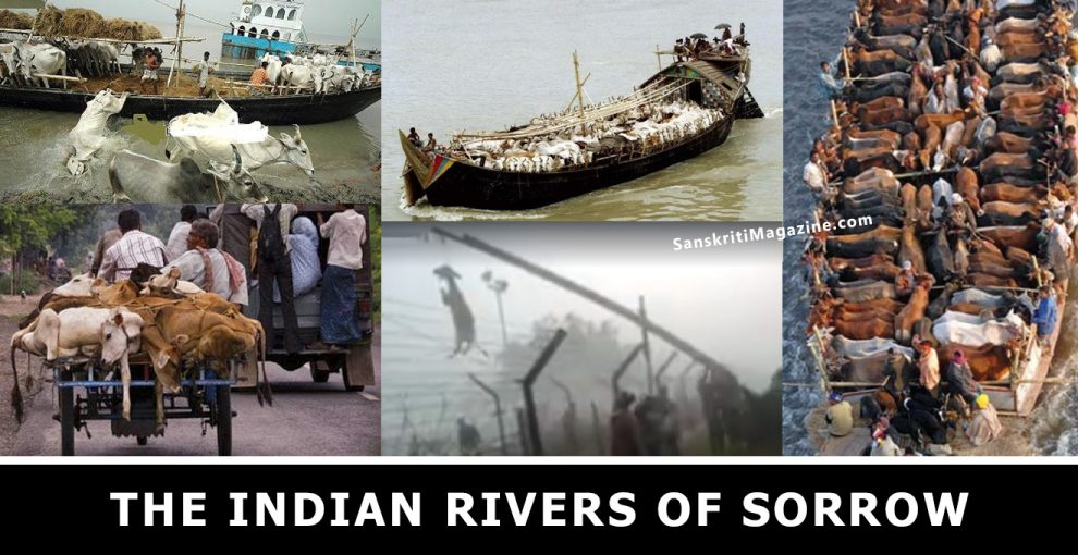 The Indian Rivers of Sorrow