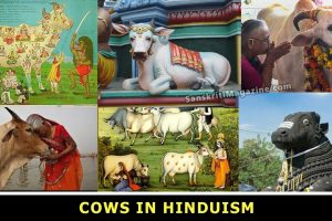 Cows in Hinduism