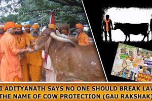 Yogi-Adityanath-says-no-one-should-break-law-in-the-name-of-cow-protection-(Gau-Rakshak)