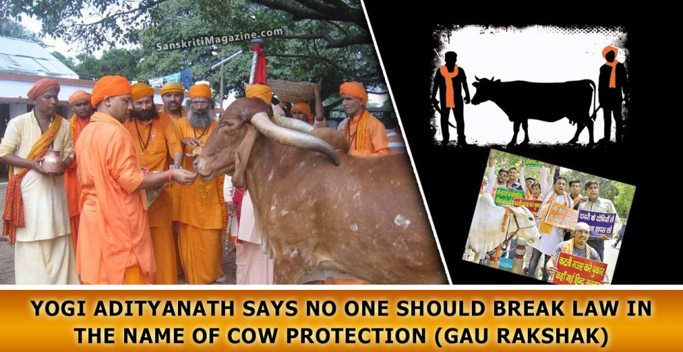 Yogi-Adityanath-says-no-one-should-break-law-in-the-name-of-cow-protection-(Gau-Rakshak)