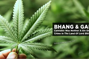 Cannabis-Was-Neither-A-Sin-Or-Crime-In-The-Land-Of-Lord-Shiva
