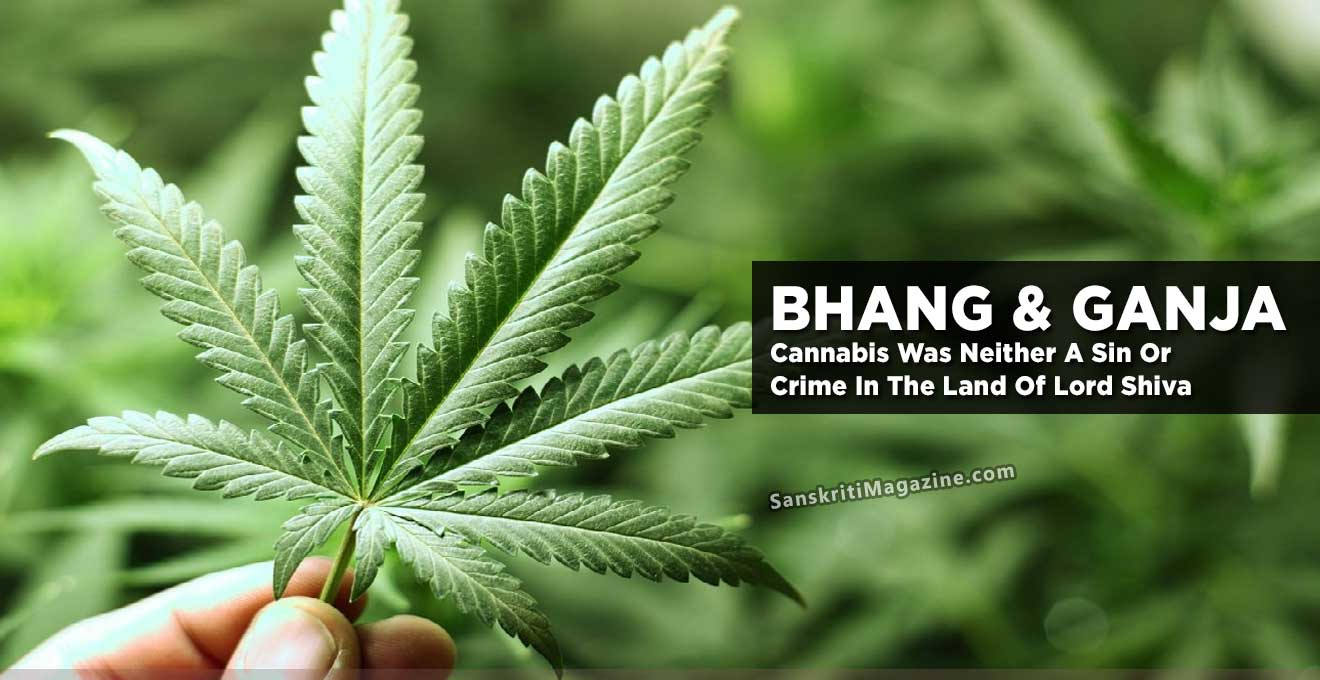 Bhang Ganja Cannabis Was Neither A Sin Or Crime In The Land Of Lord Shiva Sanskriti Hinduism And Indian Culture Website