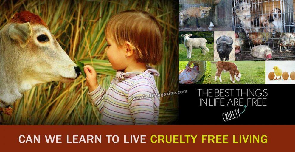 Cruelty-Free-Living