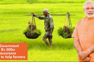 Indian-Government-mulling-Rs-500cr-market-assurance-scheme-to-help-farmers