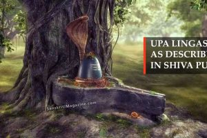 Upa Lingas as Described in Shiva Puran