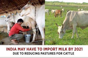 india-import-milk