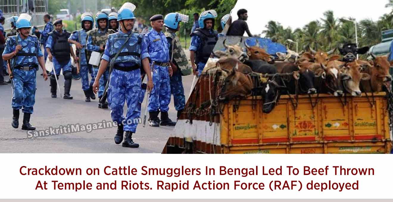 Crackdown on Cattle Smugglers In Bengal Led To Beef Thrown ...