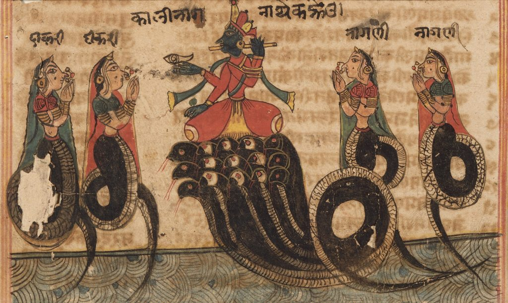 Krishna_Quelling_the_Serpent_King_Kaliya,_Folio_from_a_Bhagavata_Purana_(Ancient_Stories_of_the_Lord)_LACMA_M.71.1.23