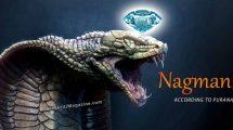 Sri Naga Mani – The Cobra Pearls according to Puranas