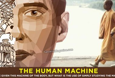 The-Human-Machine