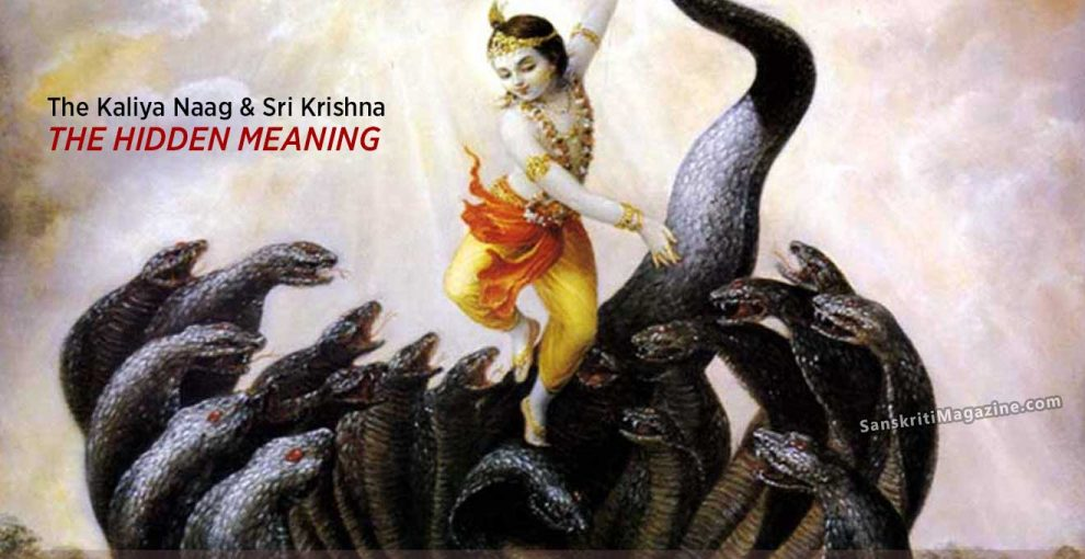 The-Kaliya-Naag-and-Sri-Krishna-–-The-Hidden-Meaning