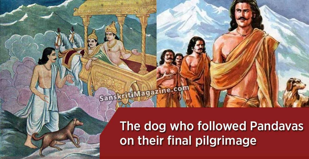 The-dog-who-followed-the-Pandavas-on-their-final-pilgrimage