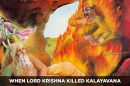 When-Lord-Krishna-Killed-Kalayavana
